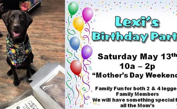 Join Fringe Studio in celebrating Lexi's Birthday!